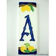 Numero civico ceramica con limoni nl11