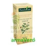 Gemoderivat Extract din mladite de zmeur 50 ml Plantextrakt