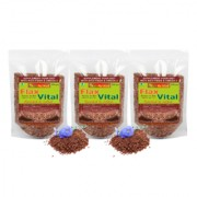 NutrActive Flax Vital Roasted and Salted Flaxseed / Fatty Acid - Pack of 3 (200 gm each)
