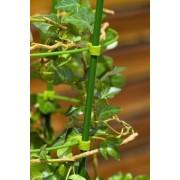 Tutore din otel plasticat pentru plante, 120 cm
