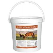 LEROS Nervinae Horse 1200g