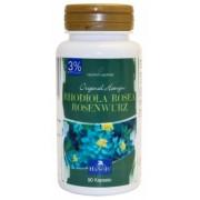 Rhodiola Rosea 3% - 500 mg - 90 gélules