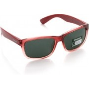 Polaroid Wayfarer Sunglasses(For Boys)