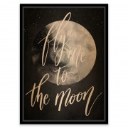 Tablou vintage - Fly me to the moon