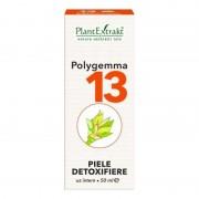 Polygemma nr.13 Piele - detoxifiere