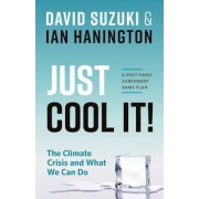 Just Cool It!: The Climate Crisis and What We Can Do - A Post-Paris Agreement Game Plan, Paperback