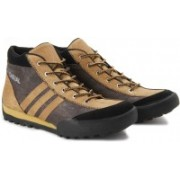 Andrew Scott 5100 Casual Shoes For Men(Brown)