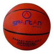 Florida kosárlabda