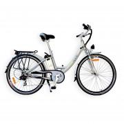 Bicicleta Eléctrica EcoMobile 250W 36V City Aluminio Plata