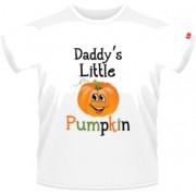 Daddy's little pumpkin - Alb - SolS Regent - 6 ani