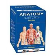 Anatomy Flash Cards/Vincent Perez