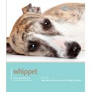 Dog Expert Whippet Dog Expert Book