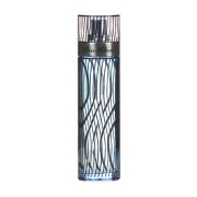 Paris Hilton for Men EdT 100ml