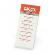 Gaggia Reinigingstabletten 21001686
