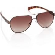 CK Jeans Aviator Sunglasses(Brown)