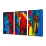 Tablou Canvas Premium Abstract Multicolor Culori Vibrante 1 Decoratiuni Moderne pentru Casa 3 x 70 x 100 cm