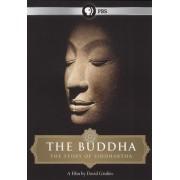 The Buddha [DVD] [2010]