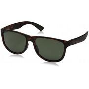 Polaroid Sunglasses Men's Pld3004s Polarized Square Sunglasses, Havana, 56 mm