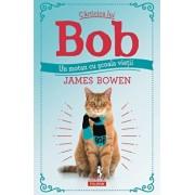 Carticica lui Bob, un motan cu scoala vietii/James Bowen