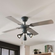 Anneke ceiling fan with light, silver, grey