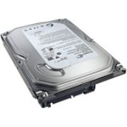 Intel Seagate 500GB Hard Disk 500 GB Desktop Internal Hard Disk Drive (ST3500414CS)