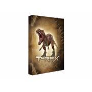 Füzetbox A4 PP karton T-Rex