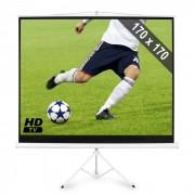 "FrontStage PSCB-96, екран със стойка, 244 см, 170 х 170 см, 1: 1 (PS-PSCB-96"")"