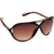 Scott Oval Sunglasses(Brown)