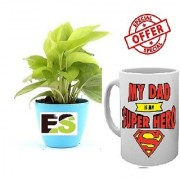 ES LUCKY MONEY PLANT FANCY POT COMBO With Freebies Mug