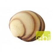 EBI AQUA DELLA SEA-SHELL 11x11x4cm - XL