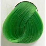 szín haj DIRECTIONS - Spring Green