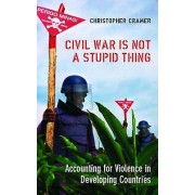 Civil War is Not a Stupid Thing by Christoper Cramer