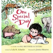 One Special Day [Board Book] (a Story for Big Brothers and Sisters): A Story for Big Brothers and Sisters