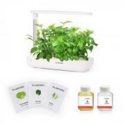 Klarstein GrowIt Farm Starter Kit Salad 9 växter 18W 2ltr Salad-Seeds näringslösning