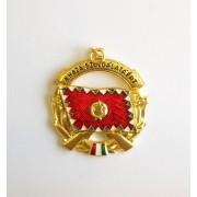 Insigna militara armata Ungariei