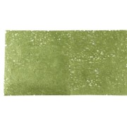 EK Success Brands Jolee's Boutique Fiber Lace Paper, Green