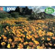 Big Ben 1000 Piece Puzzle Field of Poppies Ajo Mountains Arizona