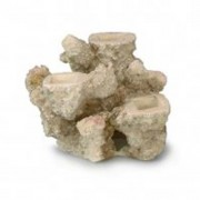 EBI AQUA DELLA CORAL REEF S 15x12x13cm, for 3 corals