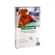 Advantage 400 Cão +25Kg - 4 Pipetas - Bayer