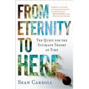 From Eternity to Here: The Quest for the Ultimate Theory of Time, Paperback