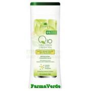 Lapte Demachiant Antirid Q10,Ceai Verde,Complex Mineral 250 ml