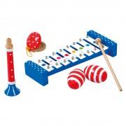 Set instrumente muzicale - Bino