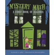 Mystery Math: A First Book of Algebra, Paperback