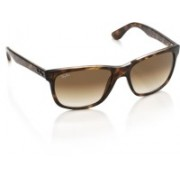 Ray-Ban Wayfarer Sunglasses(Brown)