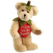 Shortcake Sweetberry by Boyds Bears 8 Plush Bear (Fashion Families Sweetberry Collection)