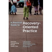 A Practical Guide to Recovery-Oriented Practice: Tools for Transforming Mental Health Care, Paperback/Larry Davidson