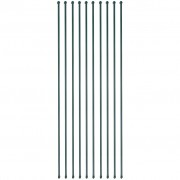 vidaXL 10 db zöld kerti növénytámasztó rúd 2 m