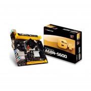 KIT A10 -4655M CON TARJETA MADRE BIOSTAR A68N-5600 AMD HDMI DDR3-NEGRO