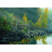 """Autumn Gold"""" In the Forest 1000 Piece Jigsaw Puzzle By Terry Isaac - Includes 100 Whimsy Pieces"""