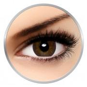 Alcon / Ciba Vision Air Optix Colors Brown - lentile de contact colorate caprui lunare - 30 purtari (2 lentile/cutie)